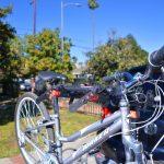 Best Rear Mounted Bike Carrier